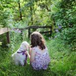 Jak znaleźć ukochanego psa dla swoich dzieci?
