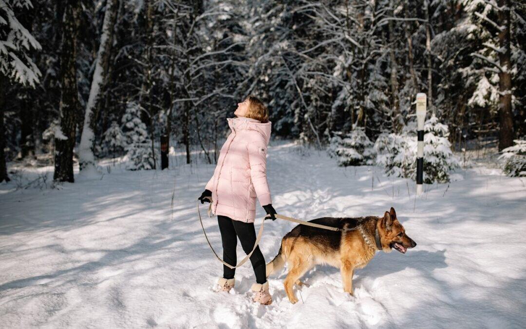 Jak zrzucić zbędne kilogramy zimą