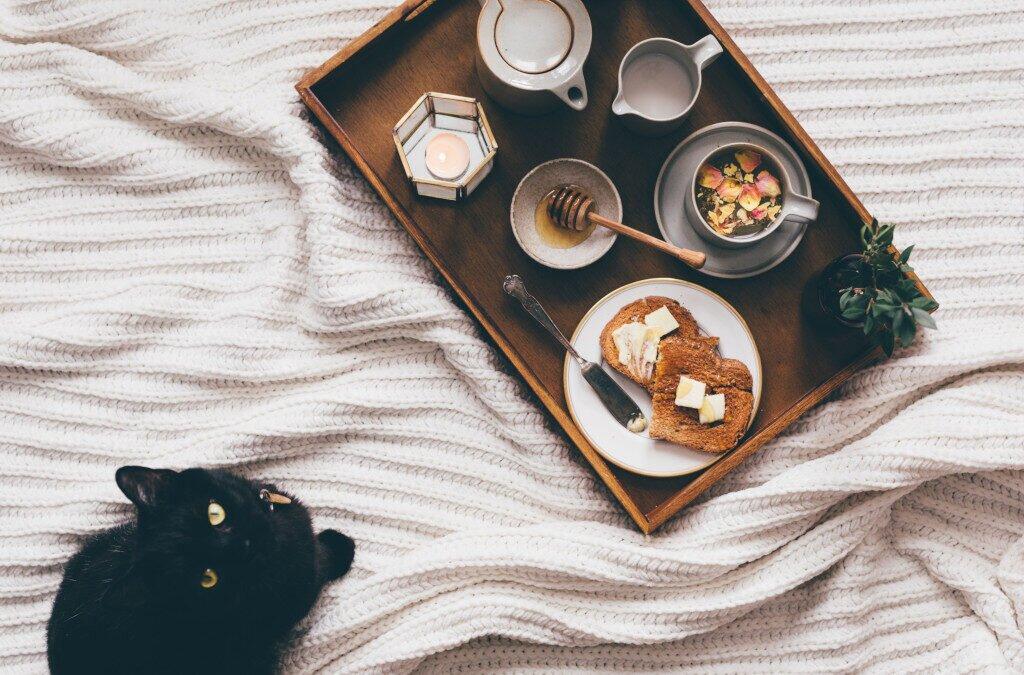Przysmaki dla psów i kotów – zadbaj o swoją pociechę
