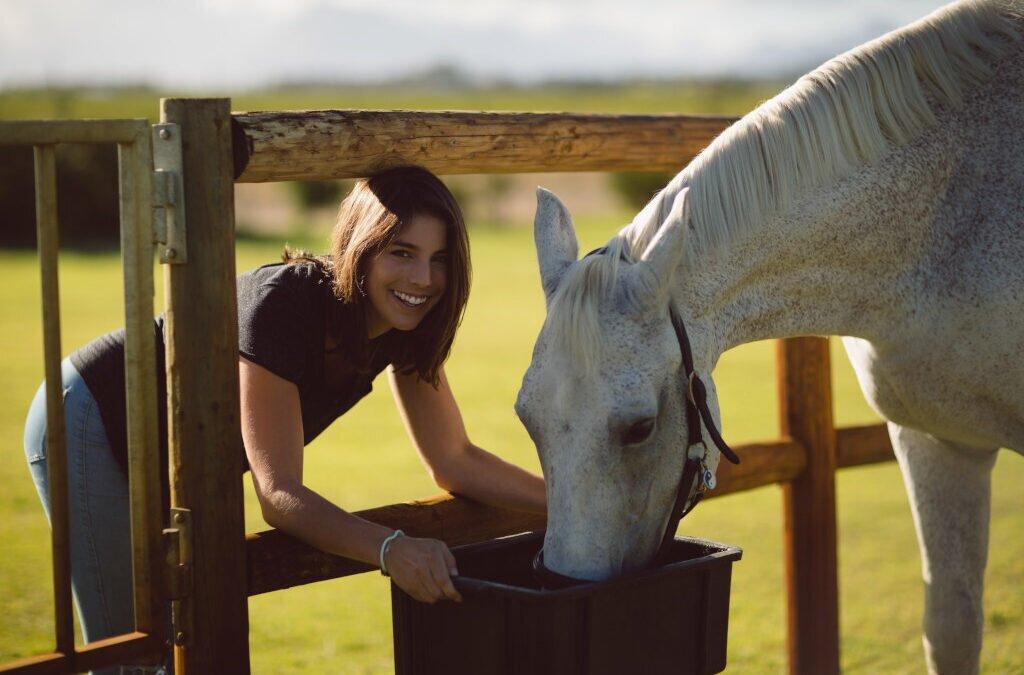 Odpadki z kampanii cukrowej jako alternatywny pokarm dla koni